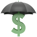 Asset Protection and Anonymity Services